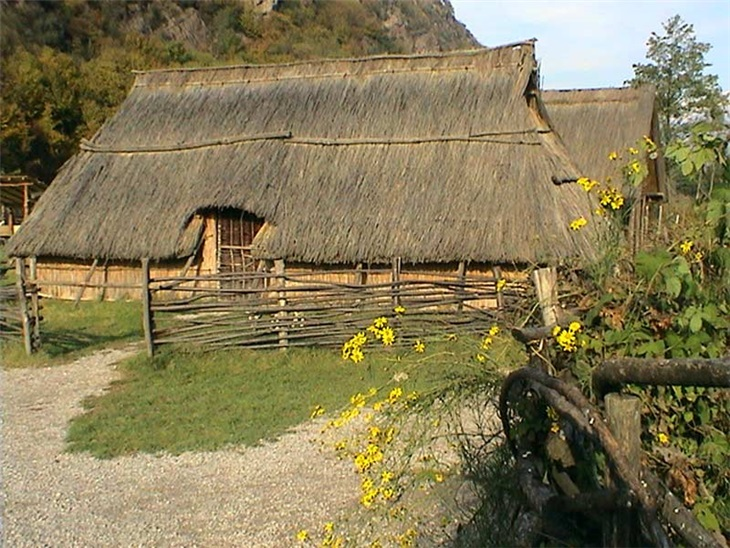 | Neolithic: in the Neolithic farmers' world